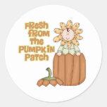 Fresh From Pumpkin Patch Baby Announcement Round Sticker