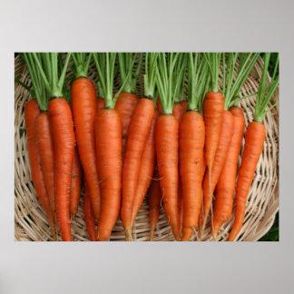 Fresh From the Garden Heirloom Carrots Poster