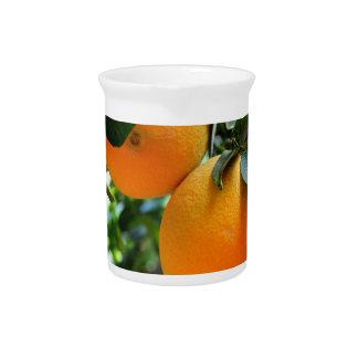Fresh Fruit  Oranges Pitcher