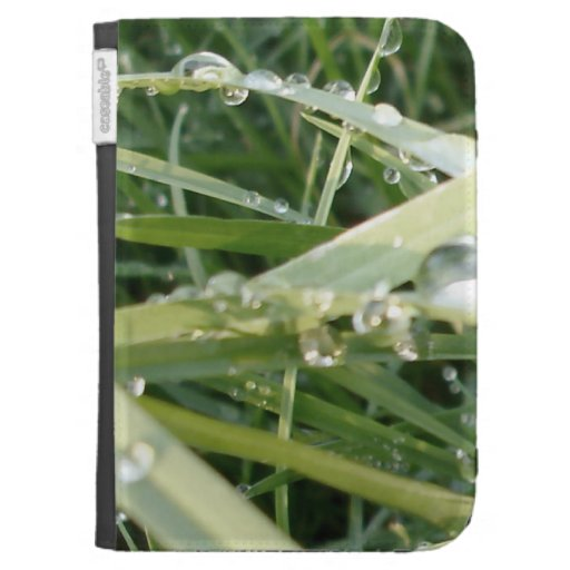 Fresh Grass - Photo of Spring Kindle Cases