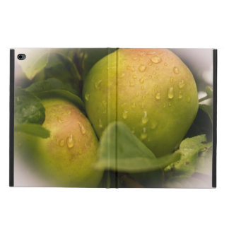 Fresh Green Apples with a Misty Border