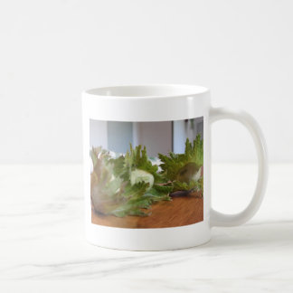 Fresh green hazelnuts on a wooden table coffee mug