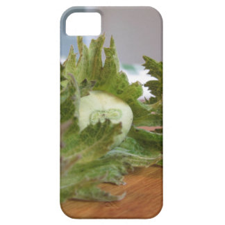 Fresh green hazelnuts on a wooden table iPhone 5 covers