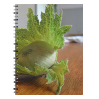 Fresh green hazelnuts on a wooden table notebook
