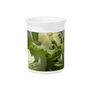 Fresh green hazelnuts on glittering background pitcher