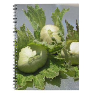 Fresh green hazelnuts on glittering background spiral notebook