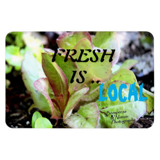 Fresh is Local (Let) Magnet (2.0)