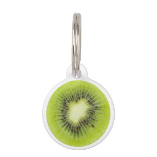 Fresh kiwi fruit. Round slice closeup isolated Pet Tag