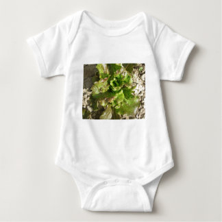 Fresh lettuce growing in the field. Tuscany, Italy Baby Bodysuit