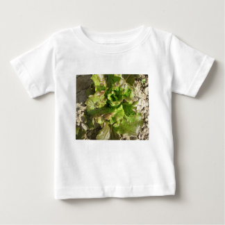 Fresh lettuce growing in the field. Tuscany, Italy Baby T-Shirt