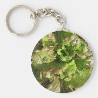 Fresh lettuce growing in the field. Tuscany, Italy Key Ring