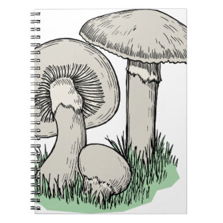 Fresh Mushrooms Notebook