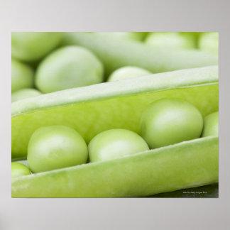 Fresh organic peas poster