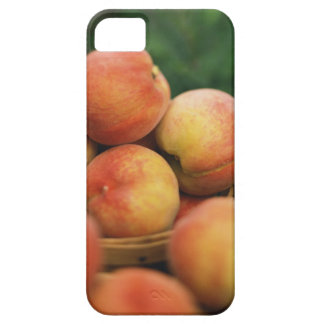 Fresh peaches iPhone 5 cases