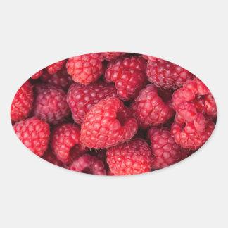 Fresh red raspberries oval sticker