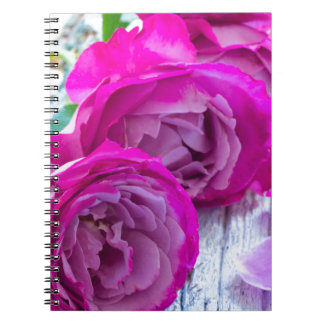 fresh roses notebook