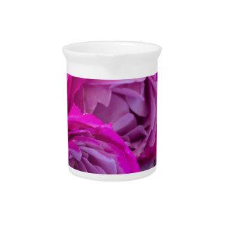 fresh roses pitcher
