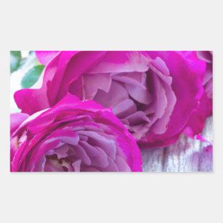 fresh roses rectangular sticker
