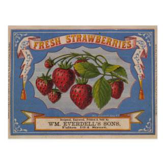 Fresh Strawberries Post Card