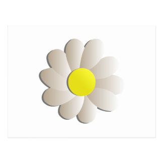 FRESH WHITE DAISY FLOWER, SPRING TIME FLOWER POSTCARD