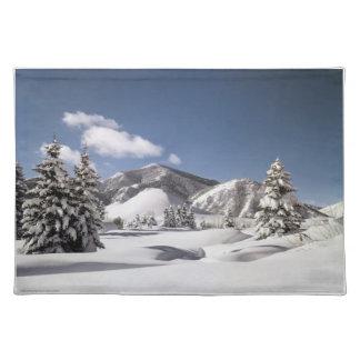Freshly Fallen Snow Placemat
