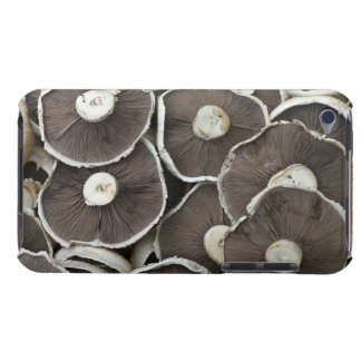 Freshly picked Portobello field mushrooms on Case-Mate iPod Touch Case