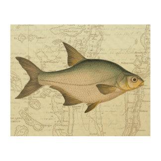 Freshwater Fish on Map Wood Wall Art