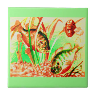 freshwater sunfish tile