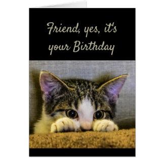 Friend can't Hide It's your Birthday Cute Kitten Card