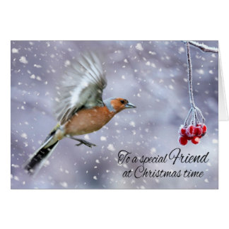 Friend Chaffinch In The Winter Snow greeting Card