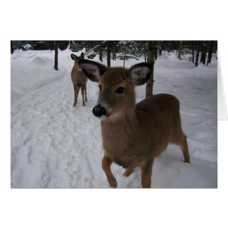 friendly deer card