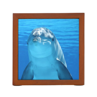 Friendly Dolphin Photo Desk Organiser