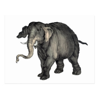 friendly elephant 🐘 postcard
