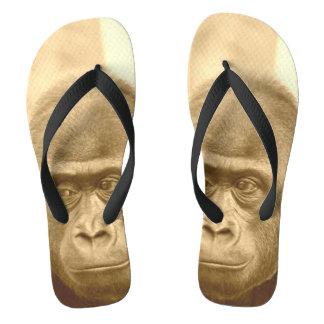 friendly gorilla, sepia thongs