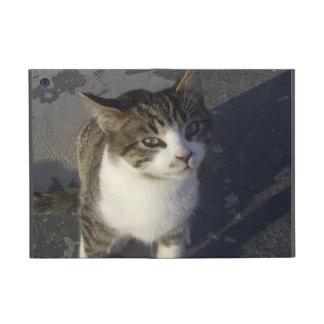 Friendly Kitten iPad Mini Case