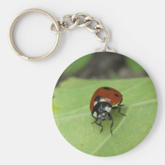 Friendly Ladybug Key Ring