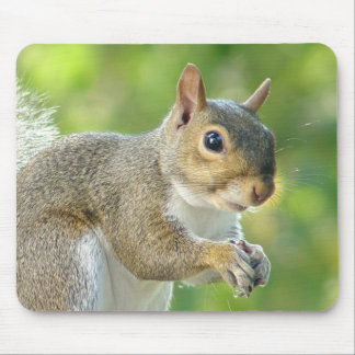 Friendly Little Squirrel Mousepad