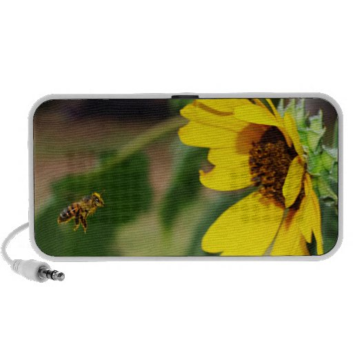 Friendly Meeting, the Bee and Sunflower Speaker