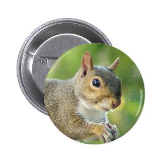 Friendly Squirrel Animal Button