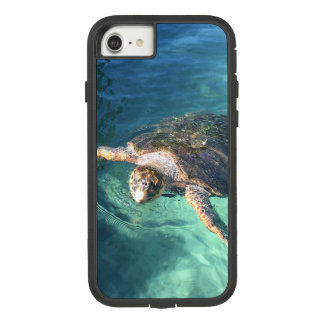 Friendly Turtle in Mexico Case-Mate Tough Extreme iPhone 8/7 Case