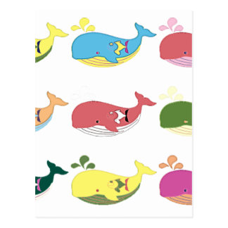 Friendly Whales Postcard