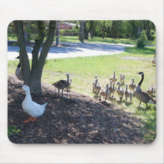 Friendly White Duck with Geese Mouse Pad