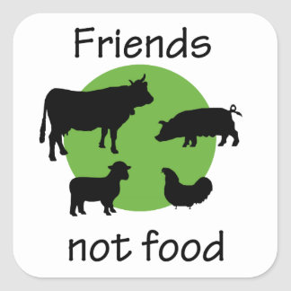 Friends, Not Food Square Sticker