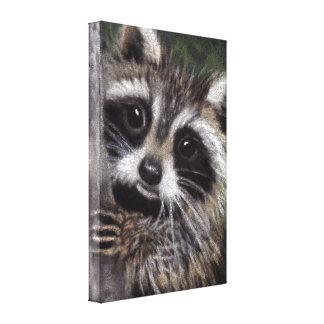 Friends? Raccoon Canvas Print