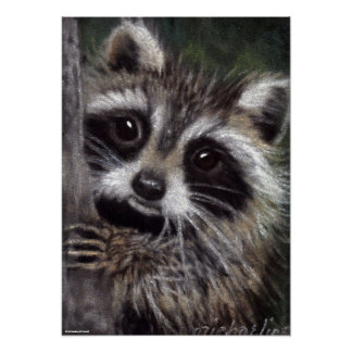 Friends? Raccoon Poster