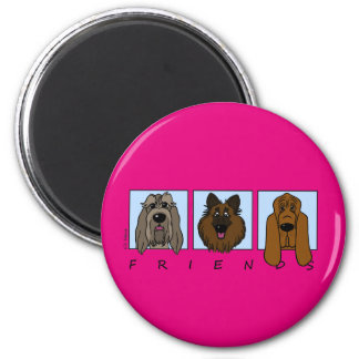 Friends: Spinone Italiano, Tervueren, Bloodhound Magnet