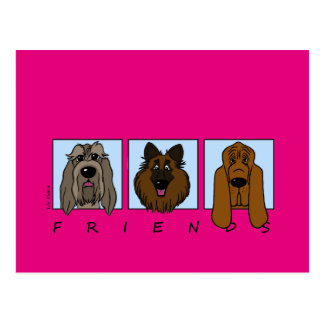 Friends: Spinone Italiano, Tervueren, Bloodhound Postcard
