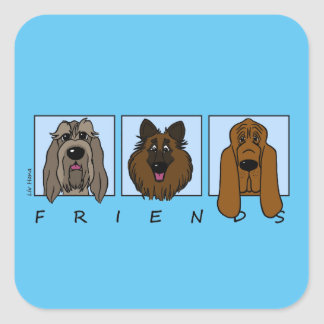 Friends: Spinone Italiano, Tervueren, Bloodhound Square Sticker