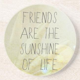 Friends & Sunshine Coaster