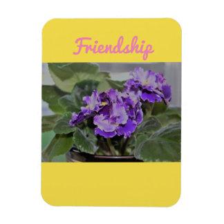Friendship African Violet magnet